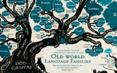What is the origin of languages?